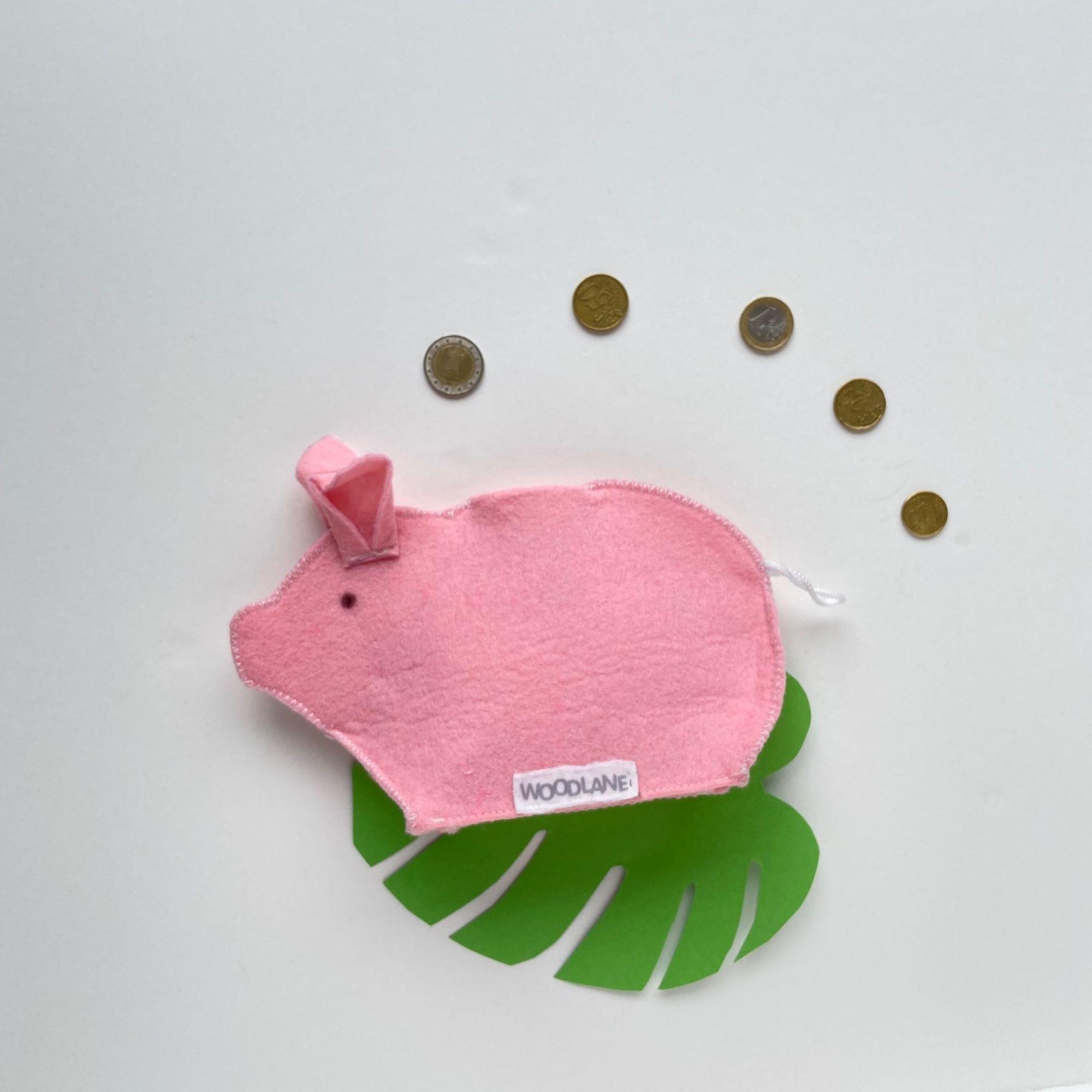 foto piggy munten